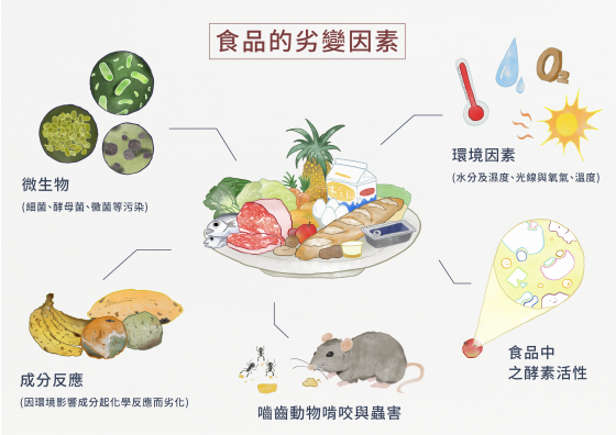 只會把食物放冰箱是不夠的,更要瞭解有效日期和保存方式